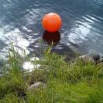 Orange boll