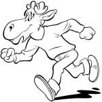 Elmer springer